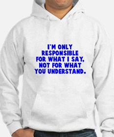 Responsible for what I say Hoodie