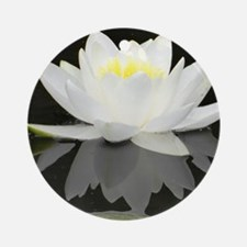 White water lily with black backgro Round Ornament