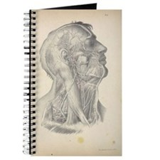 Anatomy Drawing Journal