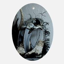 Iron skull Oval Ornament