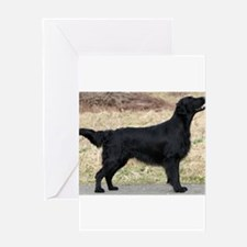 flat coated retriever black full Greeting Cards
