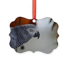 Congo African Grey Parrot Ornament