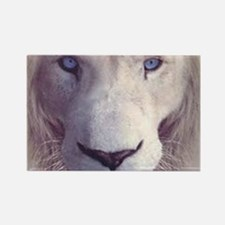 white lion  Rectangle Magnet