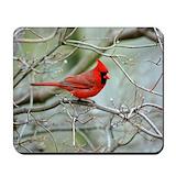Cardinal bird Mouse Pads