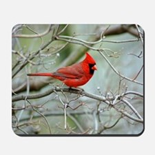 Wild Birds Mousepad