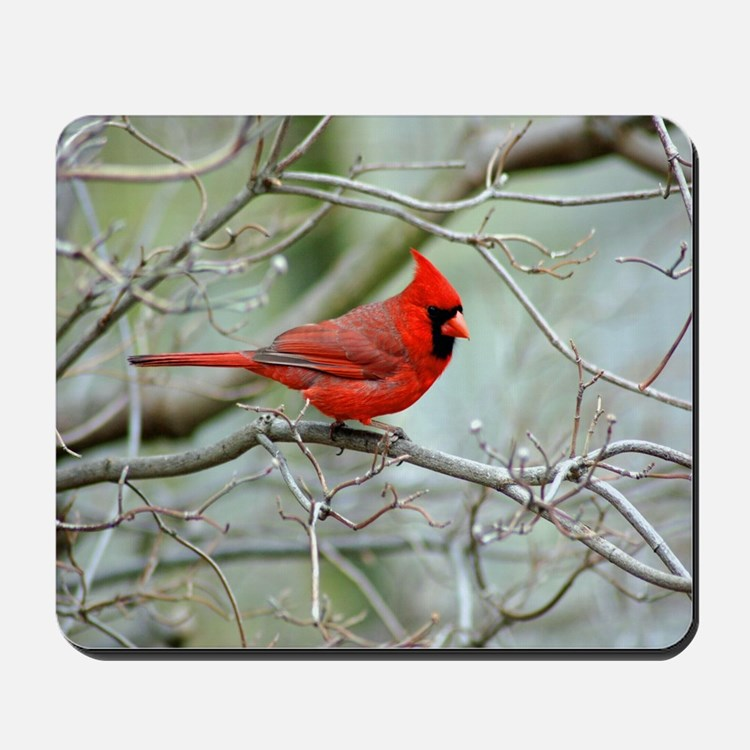 Wild Birds Mousepad