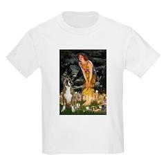 Fairies & Boxer T-Shirt