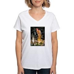 Fairies & Boxer Shirt