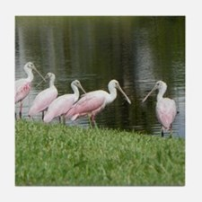 SPOONBILLS AT THE LAKE Tile Coaster