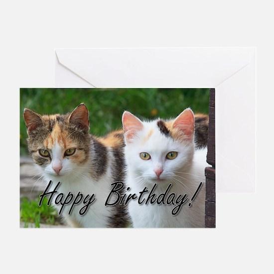 Happy Birthday Cats Greeting Card