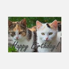 Happy Birthday cats Magnets
