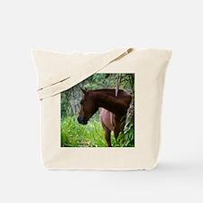 Costa Rica horse Tote Bag