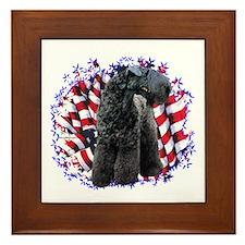 Kerry Patriot Framed Tile