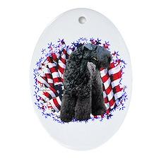 Kerry Patriot Oval Ornament