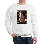 The Accolade & Boxer Sweatshirt