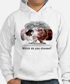 Which Do You Choose? Hoodie