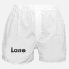 Lane Metal Boxer Shorts