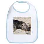 Northern Elephant Seal Bib