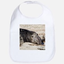 Northern Elephant Seal Bib
