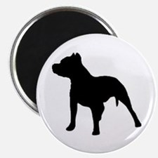 pitbull 2 Magnets