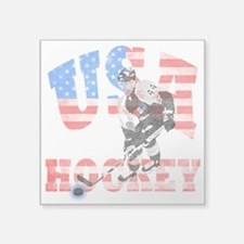 USA hockey Sticker