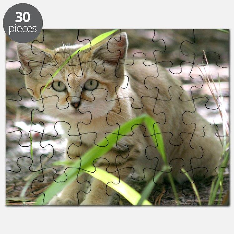 Sand Cat Genie Puzzle
