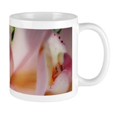 Pink orchid Mugs