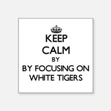 Keep calm by focusing on White Tigers Sticker