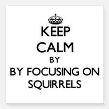 Keep calm by focusing on Squirrels Square Car Magn