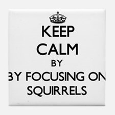Keep calm by focusing on Squirrels Tile Coaster