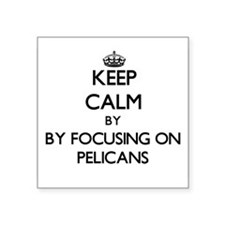 Keep calm by focusing on Pelicans Sticker