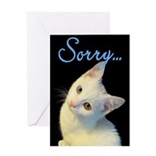 Sorry Cute White Turkish Van Kitten Greeting Card