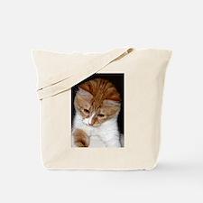 Cute Kitty Looking Tote Bag