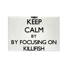 Keep calm by focusing on Killifish Magnets