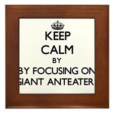 Keep calm by focusing on Giant Anteaters Framed Ti