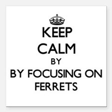 Keep calm by focusing on Ferrets Square Car Magnet