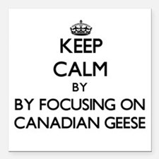 Keep calm by focusing on Canadian Geese Square Car