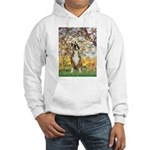 Spring with a Boxer Hooded Sweatshirt