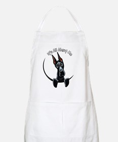 Great Dane IAAM Apron
