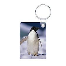 C Little Penguin Aluminum Keychains