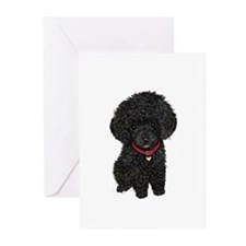 Poodle pup (blk) Greeting Cards (Pk of 10)