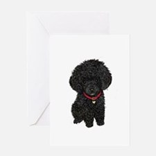 Poodle pup (blk) Greeting Card
