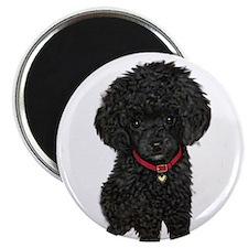 Poodle pup (blk) Magnet
