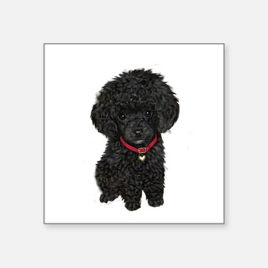 """Poodle pup (blk) Square Sticker 3"""" x 3"""""""