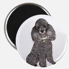 Poodle (Min-Slvr) Magnet