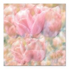 """Tulip time in Pink Square Car Magnet 3"""" x 3"""""""