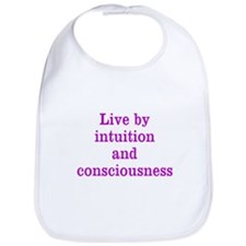 Intuition Consciousness Bib