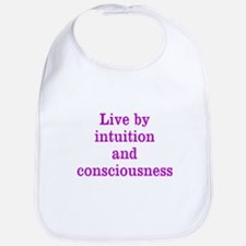 Intuition Consciousness Bib