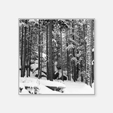 "Unique Snow covered trees Square Sticker 3"" x 3"""