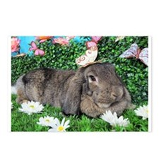 Phoebe-Spring Butterflies Bunny Postcards (Package